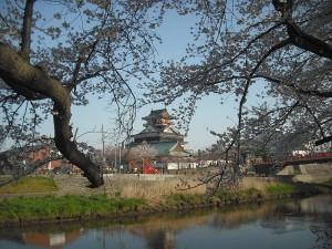 清洲城お花見3
